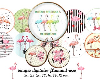 """Flamingo-Digital Collage Sheet, Circle images, Round, Flamingo, 4 Sizes 1.5"""", 2"""", 2.5"""", and 3"""" Instant Download"""