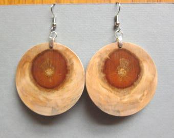 XLarge Circle Exotic Wood Earrings Norfolk Island Pine, handmade ExoticWoodJewelryAnd ecofriendly earthy