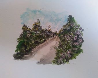 Autumn hedgerows