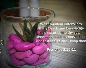 Proverbs 2:10-11