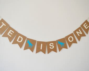 Dinosaur First 1st Birthday Bunting, Birthday Boy Party Decoration, Personalised Banner