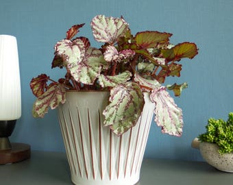 West German pottery planter ceramic planter pot orchid planter ceramic pot vintage planter mid century modern planter atomic planter gray