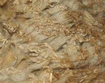 Suffolk Raw Fleece 2kg/4.41lb