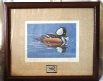 Marked Down for Quick Sale Signed 1978 Albert Gilbert Hooded Merganser Duck Stamp and Print Matted and Framed 1131 of 5800 with Papers