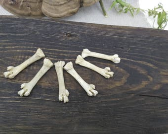 Wicca altar bones witch box filler house decor kit witchcraft real chicken bones _ SET of 6 pcs