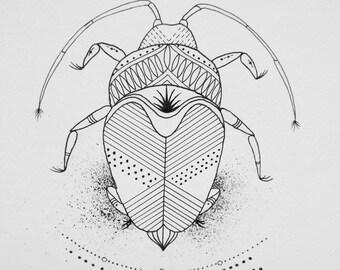 Geometric Beetle Ilustration