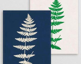 Classic Fern III- Botanical Decor- Botanical Gifts- Prints for Decor- Botanical Art- Ferns- Nature -Vintage -Vintage Prints -Vintage Art