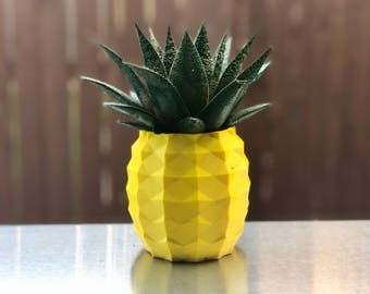 Pineapple Succulent Planter 3D Printed, Modern Pot, Geometric Planter, Pineapple Decor, Air Planter Hawaii, Succulent Pot, Pineapple Planter