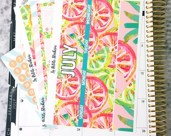 July Monthly Tropical Heat- (Stickers for Erin Condren Life Planner)
