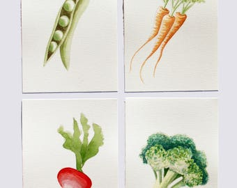 Watercolour Veggies - Carrots, Broccoli, Radish, Peas
