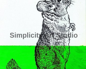 Chinchilla Original Artwork Prints / Various Colors Available/ Various Sizes Available