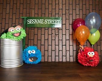 Sesame street Digital backdrop for photography