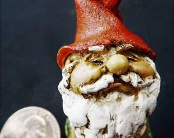 Garden Gnome: Top Collection, Fairy garden, miniature garden, fairy, gnome