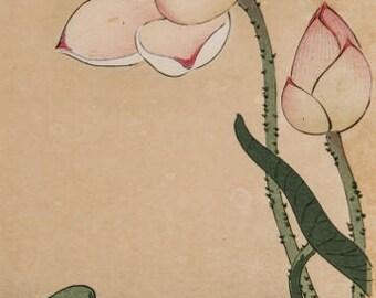"Japanese Art Print ""Lotus and Rail"" by Ohara Koson, woodblock print reproduction, fine art, asian art, cultural art, floral"