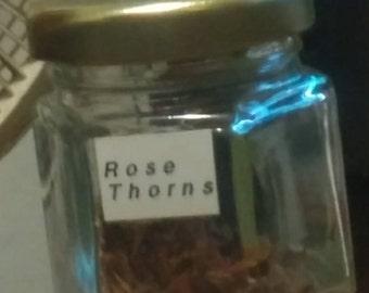 Rose Thorns, Acorns, Hickory Nutz (1/2), Pine Cones