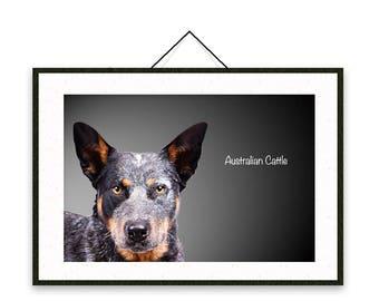 Australian Cattle - Dog breed poster, wall sticker, nursery decor, dog print, nursery print, shabby print   Tropparoba - 100% made in Italy