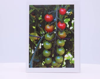 Blank Greeting Card: Cherry Tomatoes