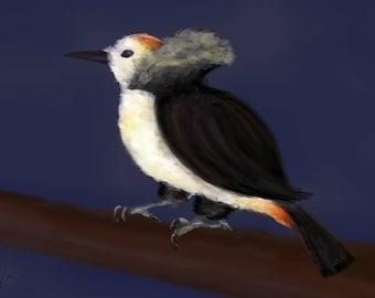 Woodpecker / Bird painting