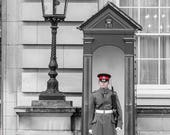 Palace Guard - Buckingham...