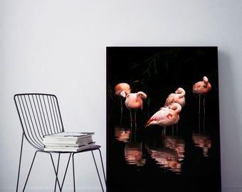 SALE 20% OFF! Flamingo Digital Print Flamingo Wall Art Poster Art Pink Flamingo Printable Flamingo Decor Room Decor,