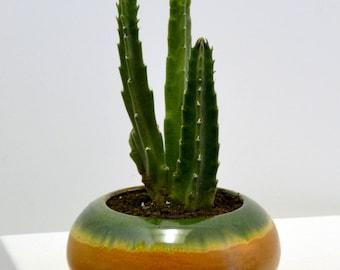 Vintage green brown glazed round hand thrown ceramic cactus planter