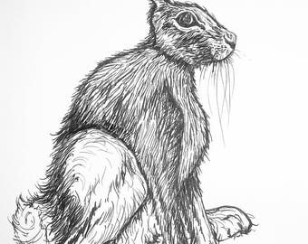 A4 Pen and Ink Drawing of a Hare - Ink on Paper