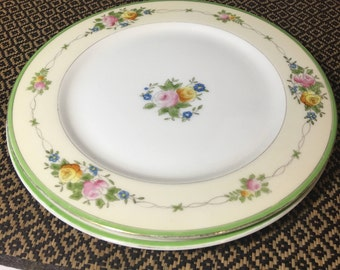 """Two Vintage Dinner Plates Hand Painted Made in Japan 9-7/8"""""""
