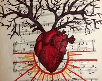 Anatomical Heart on Music Sheet