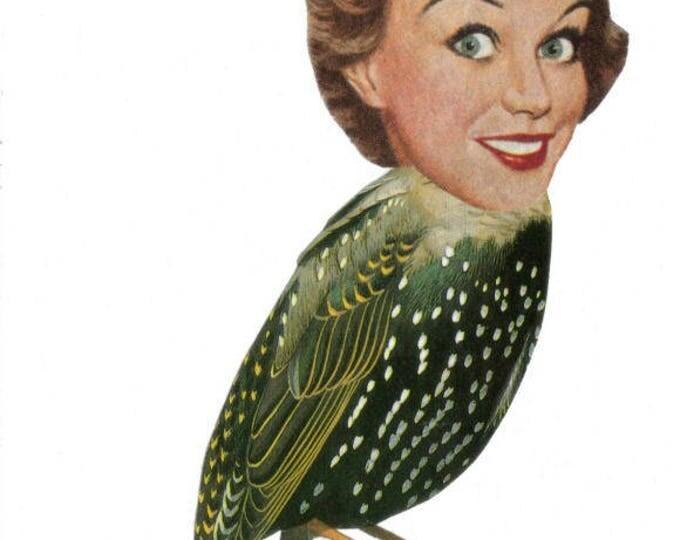 Surreal Bird Art Collage