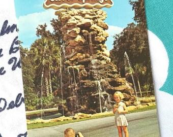 Vintage Florida postcard Silver Springs entrance 1950s Brownie camera glass bottom boat sign Floridiana souvenir kitsch