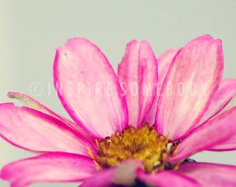 JOY 8x12 Flower Fine Art Print