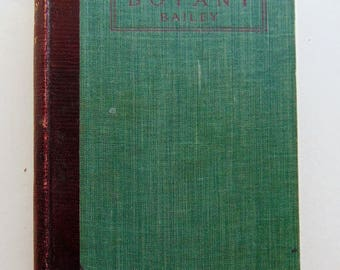 1901 Botany: An Elementary Text For Schools