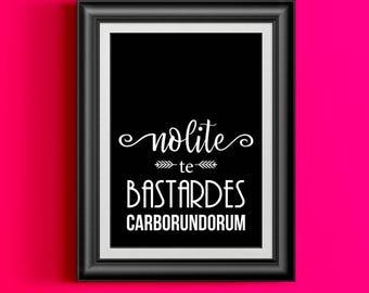 Handmaid's Tale Print, Nolite te Bastardes Carborundorum, Bookworm for Her, Handmaids Tale Gift, Feminist, Female Empowerment, Strong Women