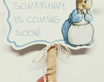 NEW - 10 PETER RABBIT Photo Props - Set #1 - A la Carte Peter Rabbit Party Items