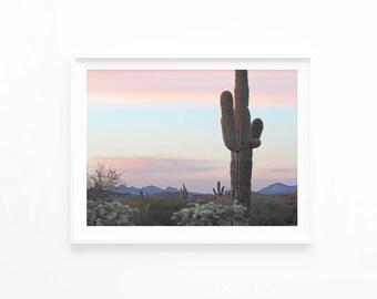 Cactus Desert Sunset Mountain Printable Photography Wall Art, Desert Photo, Cactus Download, Southwestern Decor Muted Pastel, d1c2c