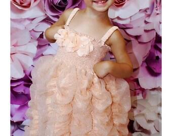 Beautiful Peach Sparkle Dress Girls Tullle Dress with Peach flowers