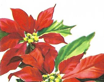 Vintage Poinsettia Greeting Card