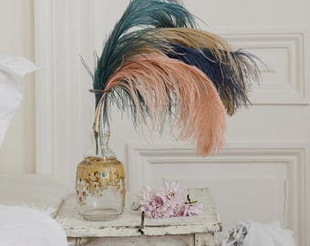 Stunning Antique French Lot of Millinery Feathers / Shabby Boho