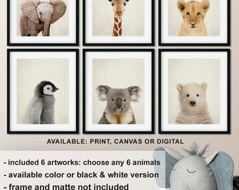 Baby Room Animal Prints, Baby animal nursery art, Zoo animals, Animal nursery prints, Penguin, Koala, Polar Bear, Safari Print/Canvas/Digi