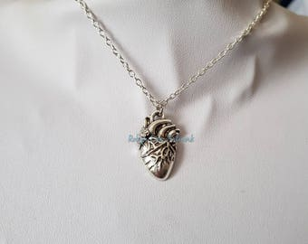 Silver Anatomical Human Heart Charm Necklace on Silver Crossed Chain or Black Faux Suede Cord. Anatomy, Gothic, Biology, Doctor, Costume