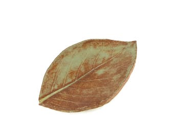 Ceramic Hydrangea Leaf - pottery - Shino - brown and green - ring dish - spoon rest