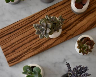 Planter Set Small Pots Succulent Planter with Zebrawood Table Tray Indoor Planter