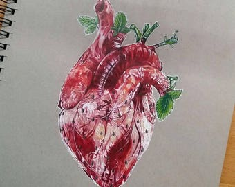 HEARTBERRY  Postcart PRINT