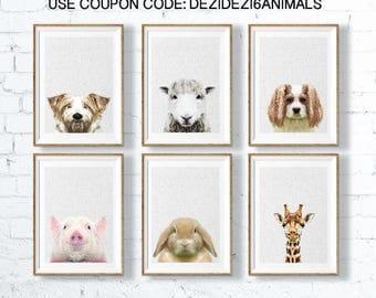 Animal Print, Animal Print Art, Animal Art Print Set, Nursery Wall Decor, Baby Animal Decor, Nursery Prints, Baby Art