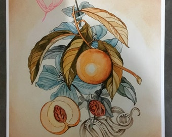 Peach, clematis, maple seed and snake