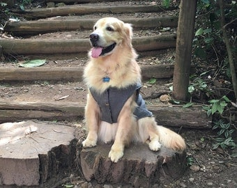 Double Sided Vest for Cats and Dogs