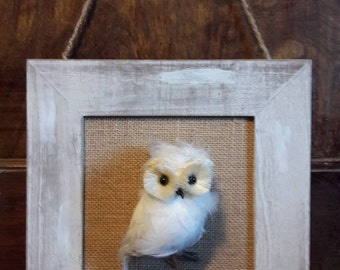 3D Owl Picture