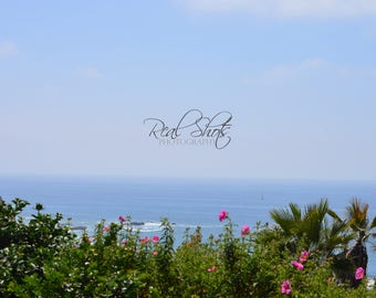 View from Dana Point
