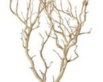 sandblasted manzanita branches 2 pieces 30 inches tall