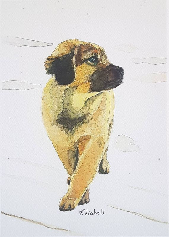 Shepherd dog puppy, A5 giclée fine art print of original artwork, watercolor on paper, gift idea for children, home nursery decoration.